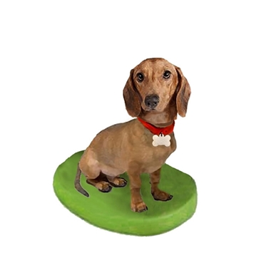 Picture of Custom Bobblehead Doll: Pet Dog Dachshund Displaying Collar and Tag