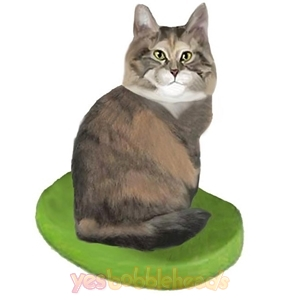 Picture of Custom Bobblehead Doll: Pet Cat Maine Coon Cat