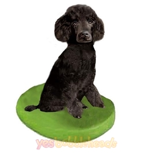 Picture of Custom Bobblehead Doll: Pet Dog Poodle Black Miniature